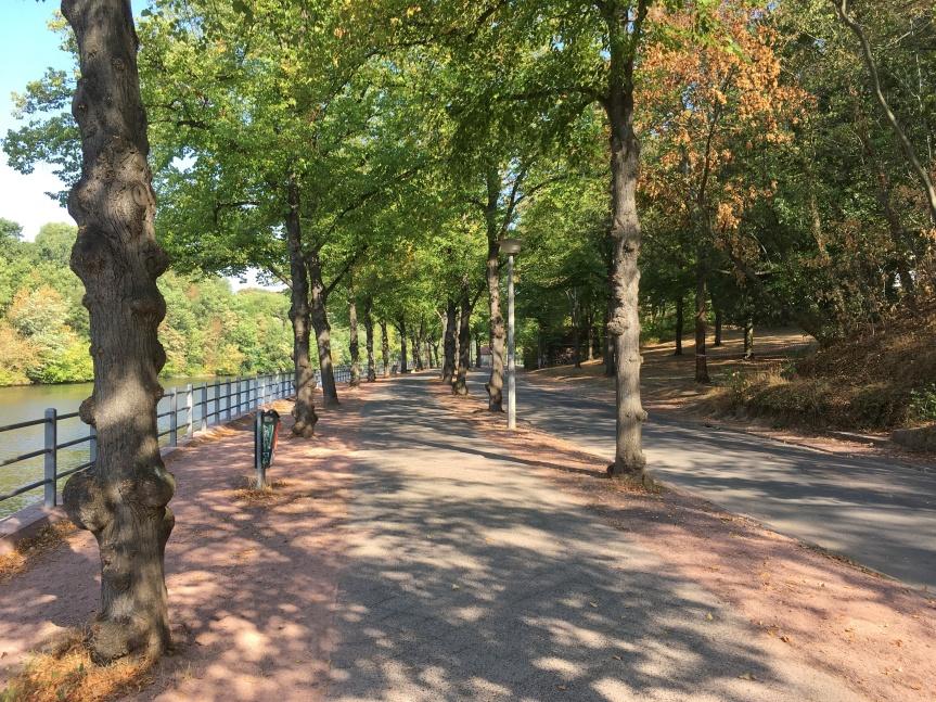Die Sanierung des Riveufers – Worum geht eseigentlich?